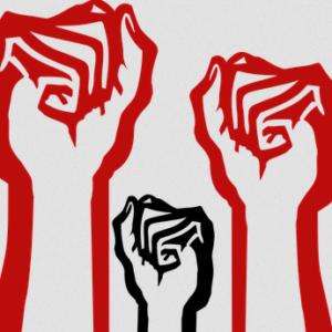 Einstellung im Berufungsprozess wegen Wiesenhof-Blockade!!!