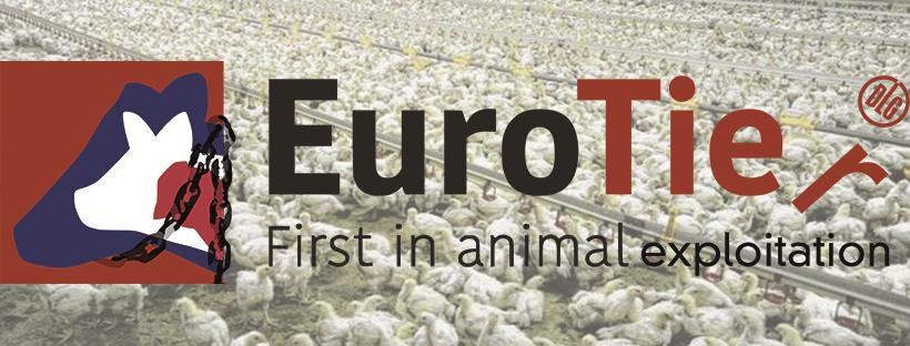 Banner_Euro_tier – Kopie jpg