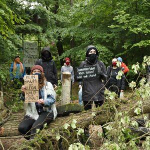 Solidarität mit den Aktivist*innen im Dannenröder Wald