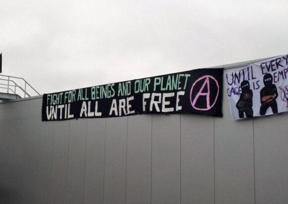 11. März 2021 Braunschweig: Aufruf zur solidarischen Prozessbegleitung