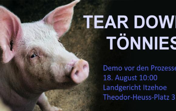 18.08.2021: Aufruf zur Solidaritätsdemo für Tear Down Tönnies vor dem Landgericht Itzehoe